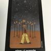 sun and moon tarot : nine of wands - strength