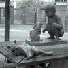 7月17日 新宿区余丁町と住吉町 の猫さま とその情景