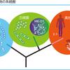 COVIDー19に迫る。 ウィルスは細菌ではないが  「細胞内共生」  は人類に繋がる「生命体誕生」の原理であった。8月3日(文中新型コロナウィルス追加情報挿入)。