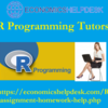 Achieve Your Goals with R Programming Homework Help