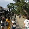『奈良に着きました。』