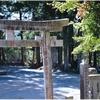 下青野・感神社(三田市)の風景 part46