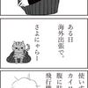 大島優子さんのインスタ動画って女子がトイレとか給湯室でやってるやつです。