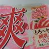 ロッテ爽とろーり練乳いちご食べてみた【レビュー】