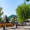 古い町並みにもパチモンとホンモンがある。ここはほんまもんや!奈良・今井町