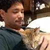 迷い猫を保護して、飼い主に返さなければならなかった話。