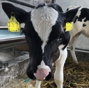 1分で読む農業ブログ