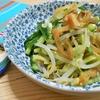簡単!!きゅうりともやしのザーサイナムルの作り方/レシピ