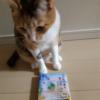 #ねこは人を笑顔にする「ちびねこ亭の思い出ごはん」( @blackcat5050 さんの投稿)※猫さんの写真3枚付き