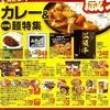 企画 サブテーマ カレー&お手軽麺特集 イトーヨーカドー 2019年12月25日号