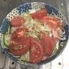 新玉ねぎとトマトでシャキシャキ感いっぱいの簡単サラダを作ってみた!