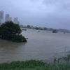 多摩川もやばかった。台風の記録(10月12日)