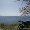 【雑記】バイクで琵琶湖、一周してみた!