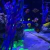 新橋駅5秒!むちうち交通事故・病院治療院・整骨院・東京・丸の内・品川・神田・汐留