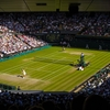 【2019年ウィンブルドンテニス】が終わってしまった 〜テニス観戦って贅沢な趣味だなとつくづく思う〜