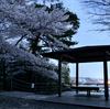 『響け!ユーフォニアム』舞台巡り―桜咲く夜の天ヶ瀬ダムと大吉山展望台へ