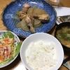 圧力鍋で鶏の手羽元と大根の煮物・野菜たっぷりスパサラ・焼きそば
