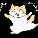 世界ふくねこ歩き~猫を探しに世界一周~