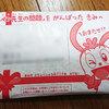 赤ペン先生が返送されました!進研ゼミ小学講座 チャレンジ2年生