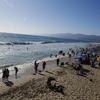 誰もマスクつけてない…米国のビーチで大混雑 「感染爆発」危惧の声が