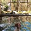 中伊豆梅木温泉 神代の湯 宿泊記 無農薬野菜を使った料理がおいしい現代的な湯治宿に一人泊