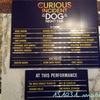 151031 THE CURIOUS INCIDENT OF THE DOG IN THE NIGHT-TIME @Ethel Barrymore Theatre