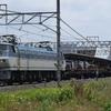第904列車 「 日曜午後のゴールデンタイムを走る機関車を狙う 」