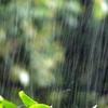 台風の日のディズニーランドでオススメの服装や持ち物や楽しみ方は?