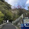 国立公園「大山」山登り(ハイキング)大山山頂周遊コース