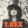 T.REX - The Slider:ザ・スライダー -