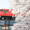 春の素敵な一瞬/津山線