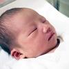 「ばぁばの本音」企画、始動。『出産の新常識』を提案します