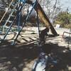 冬の公園で娘と夫をさがす