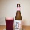 リーフマンス さくらんぼが入ったフルーティーなビール ビールの感想46