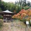 国指定天然記念物「中釜戸のシダレモミジ」を見てきました【追記】