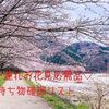 【お花見シーズン】子連れお花見に必要な物♡持ち物確認リスト