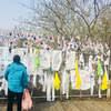 【2019ウラジオストク&韓国旅】八日目。ソウル(DMZ観光)