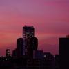 「ほぼライブ」 - 夕焼けに染まる六本木ヒルズ