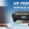 How to Contact HP Printer Support Number?