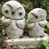 念願のフクロウ神社٩( ᐛ )و