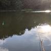 富沢の池29