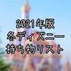 【2021年版】withコロナ!冬ディズニーの持ち物を一挙ご紹介
