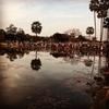 #アンコールワット個人ツアー(272)#アンコールワット人気観光スポット池