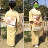 桜の残った入学式での着物、小紋コーデ。