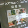 Gallery Selection@Bunkamura Gallery 2019年4月21日(日)