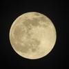 今日は満月!ニコンクールピクスP900で初満月撮り!!\(^O^)/