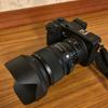 HなカメラことSIGMA sd Quattro Hを試用してきた。葉脈もあるよ。
