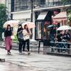 雨の観光地