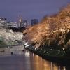皇居に佇む「楠木正成」の銅像!銅像や場所についてご紹介!