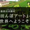田んぼアート|田舎館村の観光スポットをレポート!